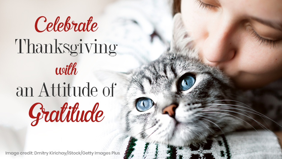 Celebrate Thanksgiving with an Attitude of Gratitude